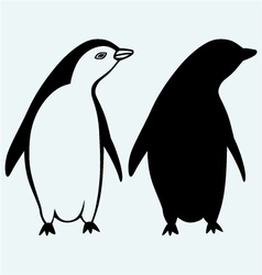Cartoon penguin vector image