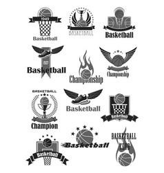 basketball sport symbol for sporting club design vector image