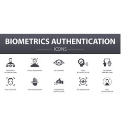 Biometrics authentication simple concept icons set vector