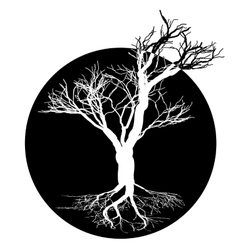 Black and white drawing of deciduous tree Black vector image
