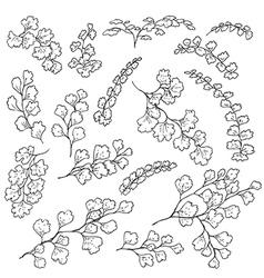 Doodle fern vector