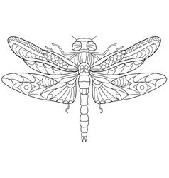 Dragonfly coloring page vector