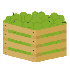 Wooden boxes full colorful apples image vector