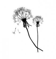 two black dandelions vector image