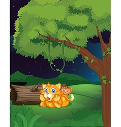 An orange cat vector image