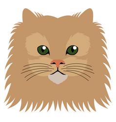 avatar of a cat cat breeds vector image