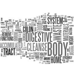 Benefits of the home cleanse text word cloud vector