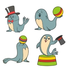 circus seals vector image