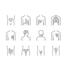Ill human organs linear icons set sore heart vector