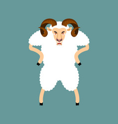ram angry sheep evil emoji farm animal aggressive vector image