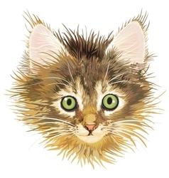 sadness kitten vector image