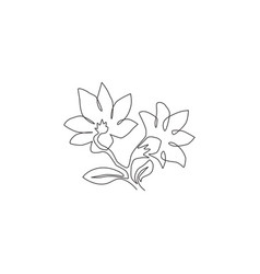 single one line drawing beauty fresh vector image