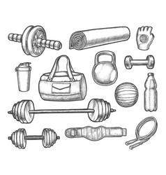 sketch gym aerobics powerlifting vector image