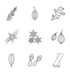 Spices icon set outline style vector