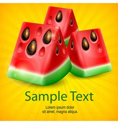 Watermelon on yellow vector image