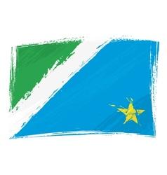 Grunge Mato Grosso do Sul flag vector image vector image