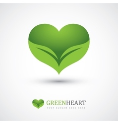 Two leaves in heart shape vector