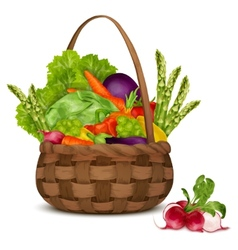 Vegetables in basket vector image vector image