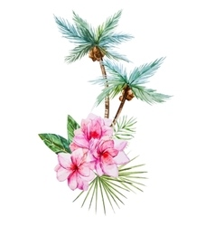Watercolor tropical palm vector image