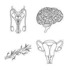 body and human symbol set vector image