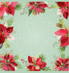 Christmas winter poinsettia flowers background vector