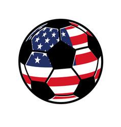 classic soccer ball football with usa flag vector image