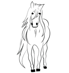 Horse design on a white background vector