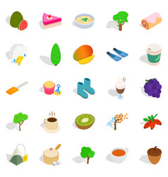 Cleansing the body icons set isometric style vector