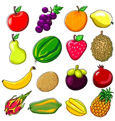 Fresh Fruits Doodle Style vector image vector image