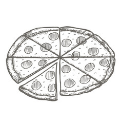 vintage pizza drawing hand drawn vector image vector image