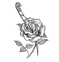 rose flower piersed by dagger tattoo vector image