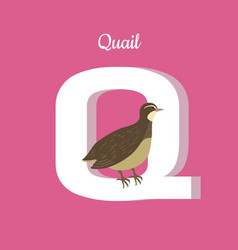 animals alphabet letter - q vector image