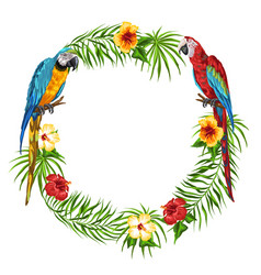 tropical frame with parrots vector image