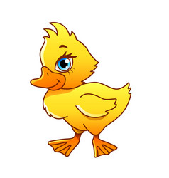 cartoon duck isolated vector image