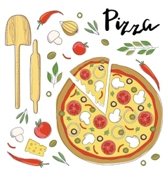 pizza isolated on a white vector image vector image