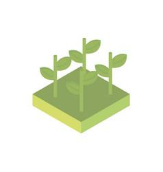 Farm growth plants harvest agriculture isometric vector