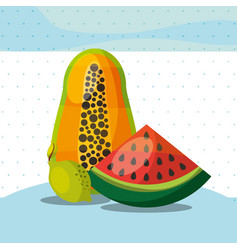 fruits fresh organic healthy watermelon papaya vector image