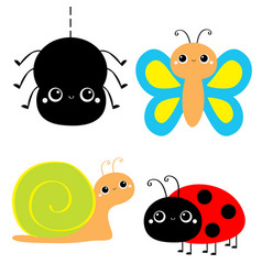 insect set ladybug ladybird butterfly spider lady vector image