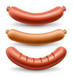 Sausage set vector image vector image
