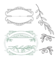 set for logo Olive vector image