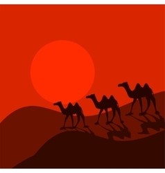Camel caravan in desert cartoon vector
