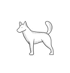 Dod sketch icon vector