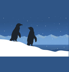 Landscape of penguin on ice silhouettes vector
