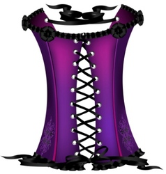purple corset vector image