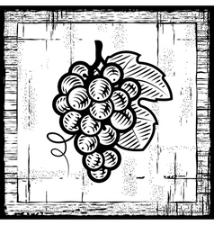 retro grapes bunch black and white vector image