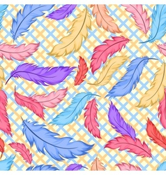 Seamless pattern with colorful feathers on plaid vector image