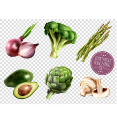 Vegetables transparent set vector