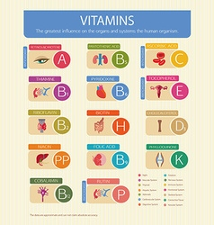 Vitamins and their effect vector
