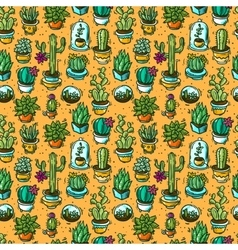 cacti and succulents vector image