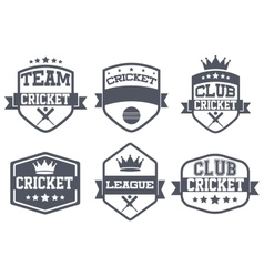 Set of Vintage Cricket Club Badge and Label vector image vector image